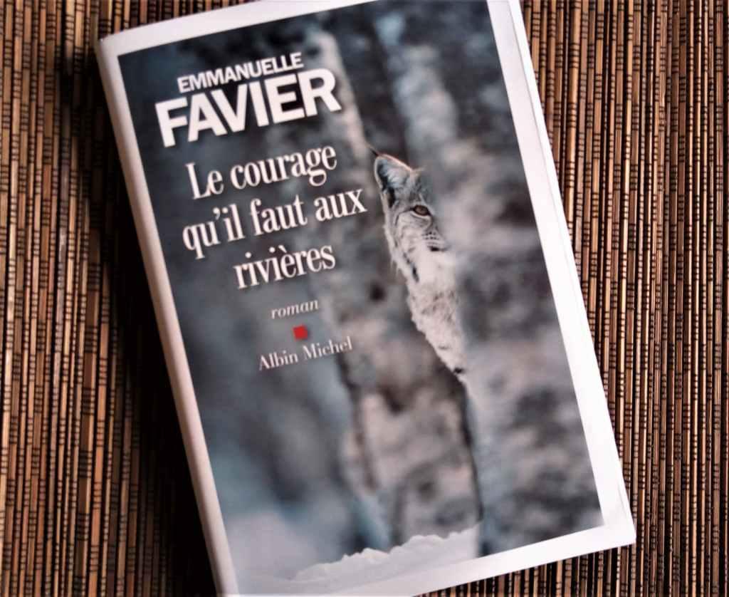 le courage qu'il faut aux rivières d'Emmanuelle Favier, éditions Albin Michel