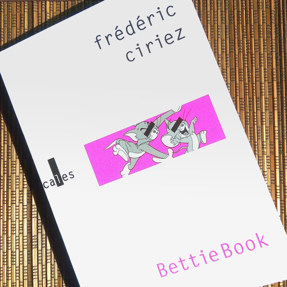 livre BettieBook de Frédéric Ciriez éditions Verticales