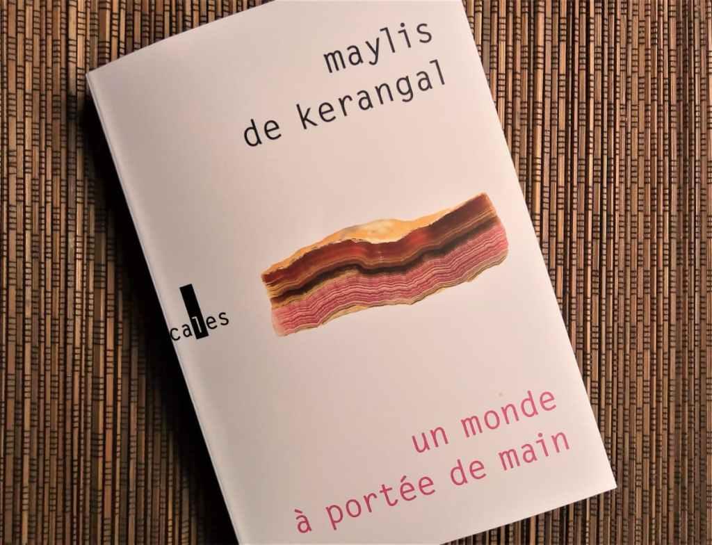livre un monde à portée de main de maylis de Kerangal éditions verticales