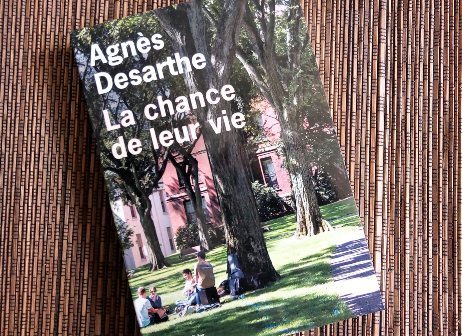 la chance de leur vie d'Agnès Desarthe aux editions de l'Olivier