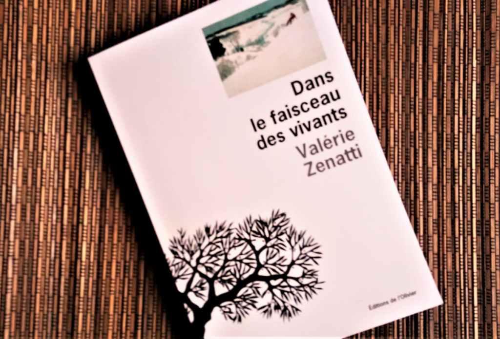 Dans le faisceau des vivants de Valérie Zenatti éditions de l'Olivier
