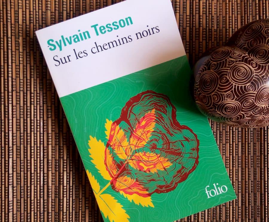 sur les chemins noirs de Sylvain Tesson chez Folio